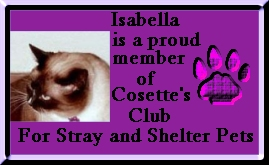 Cosette's Shelter Club