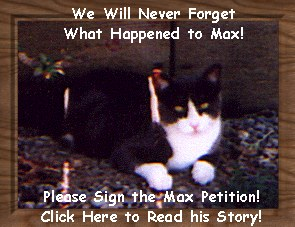 Justice for Max