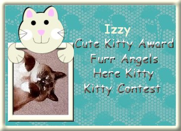 Izzy Cute Kitty Award