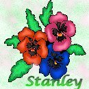 click for pic of Stanley