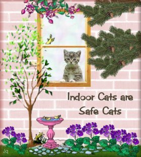 Inside Cats are Safe Cats
