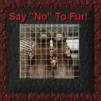 Say NO to Fur!