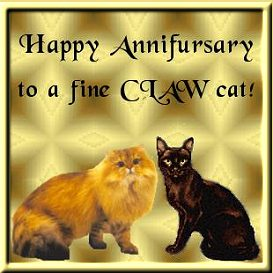 One year anniversary with CLAW