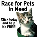 Click to help pets in need