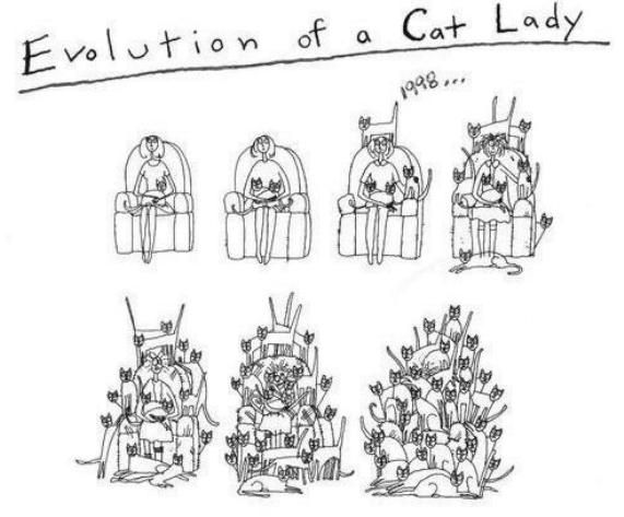 Cat Lady Evolution