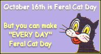 Make every day Feral Cat Day