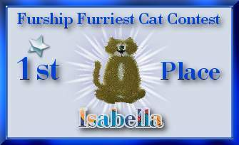 Furriest Cat Contest Winner