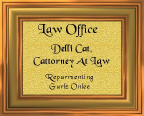 Delli Cat, Cattorney At Law