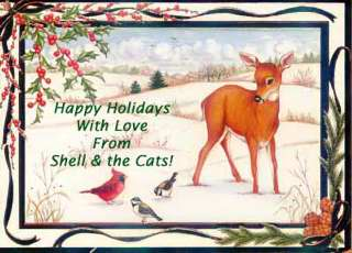 From Shell and the Cats