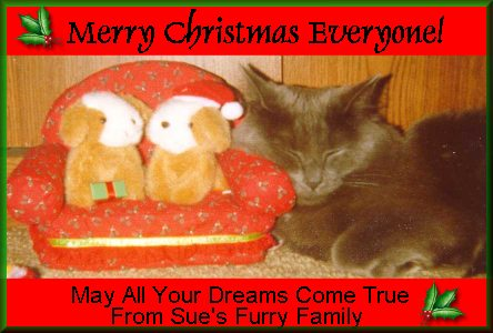 from Sue's Furry Family